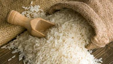 Photo of رئيس شعبة الأرز: لا توجد نية لرفع الأسعار الفترة المقبلة