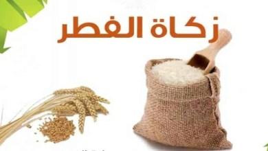 Photo of دار الإفتاء المصرية: زكاة الفطر ١٥ جنيه عن كل فرد