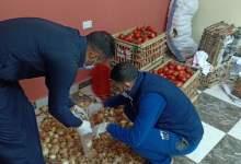 Photo of مركز شباب برشوم الكبرى بطوخ يوفر الخضروات والفاكهة للمواطنين