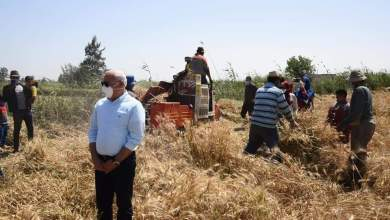 Photo of محافظ بور سعيد: زيادة المساحة المنزرعة بالقمح عن العام الماضي بمقدار  ١٥٠٠ فدان