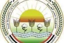 Photo of رسميا.. وزير الزراعة يعلن فتح السوق البرازيلي امام الموالح المصرية