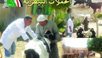 """Photo of وزير الزراعة يتلقى تقريراً بإنجازات مشروع الاستثمارات الزراعية المستدامة وسبل المعيشة """"سيل"""""""