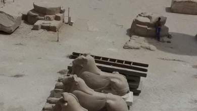 Photo of ترميم تماثيل الكباش الموجودة خلف الصرح الأول بمعبد الكرنك بمدينة الأقصر