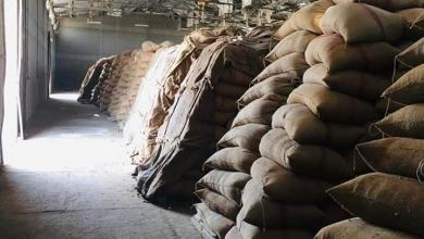 Photo of محافظ الدقهلية: توريد ١٨٧٣٠٠ طن من محصول القمح  للشون والصوامع  بنطاق المحافظة