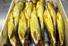 Photo of ضبط ٥ أطنان سمك مملح فاسد داخل مصنع بالإسكندرية