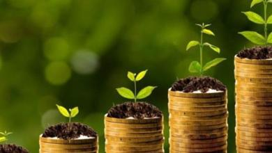 Photo of مصر تتجه نحو مشروعات الإقتصاد الأخضر لتحقيق أهداف التنمية المستدامة