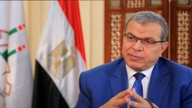 Photo of القوى العاملة: تعيين 29 شابا والتفتيش على 140 منشأة بشمال سيناء