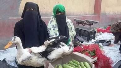 """Photo of بائعة البطة"""" المسروقة: رفضت التنازل عن محضر السرقة ضد المحامى"""
