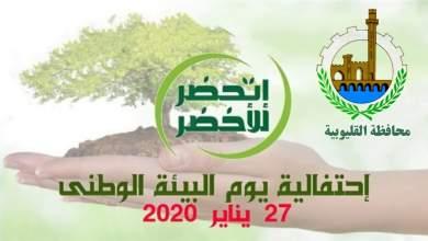 """Photo of """"القليوبية"""" تحتفل بيوم البيئة الوطني 2021 تحت شعار: التعافي الأخضر"""