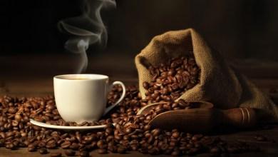 Photo of صراصير وحشرات.. شاهد.. طبيب يحذر هواة القهوة من مكونات بعض الأنواع
