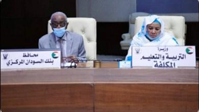 السودان: مجلس الوزراء يجيز النظام المالي المزدوج