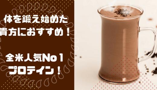 ゴールドスタンダードはコスパがいいけどまずい?!ダブルリッチチョコレートを飲んだ感想を紹介します