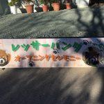 のんほいパークにレッサーパンダがやってきた!初公開の様子をご紹介