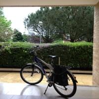 hoje é o dia mundial de bicicleta para o trabalho, as known as  Global Bike to Work Day, by Strava