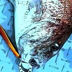 日本海で真鯛ジギングbyお客さん