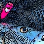 浜名湖ナウ!byお客さん チヌトップでストーク活躍してまーす!
