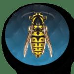 Bug01