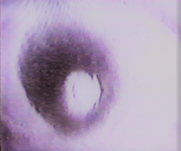 Image Still: ever/Becoming, John Naccarato, Beta analogue video format, (partial excerpt), 21'15, 1984.