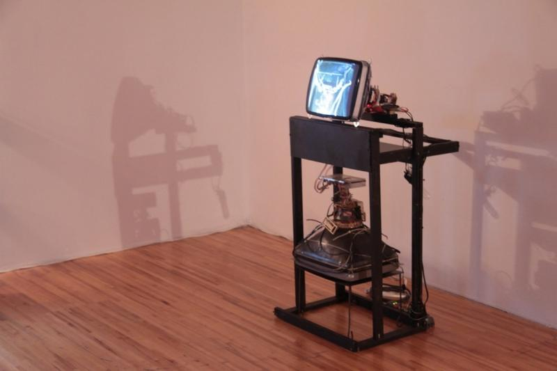 Naccarato, Untitled aka Leonard (Hybrid Sculptural Objects), Axeneo7, Gatineau, QC, 2010