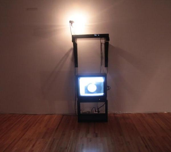 Untitled (a.k.a. Marta) (Overview) (Hybrid Sculptural Objects), Naccarato, Axeneo7, Gatineau, QC, 2010