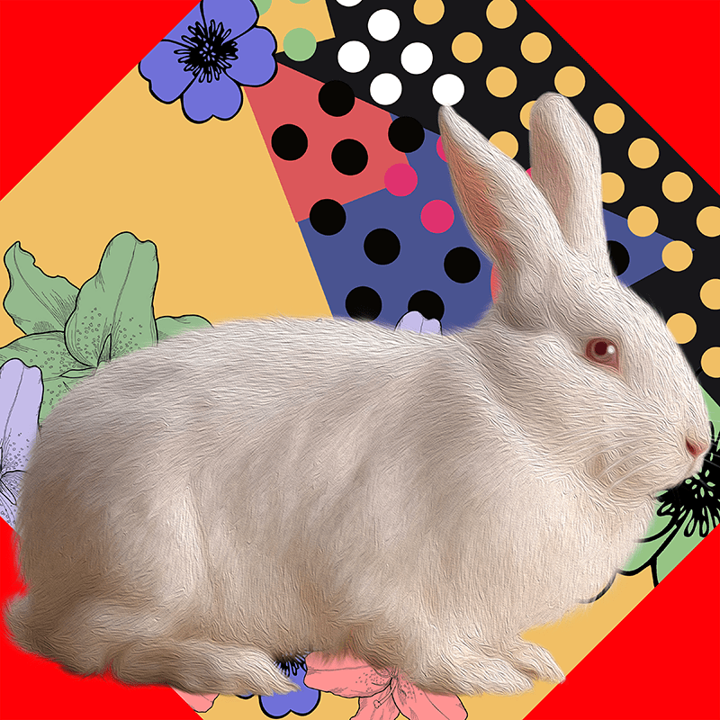 white.Rabbit (day 03), NFT / Print series, naccarato, 2021