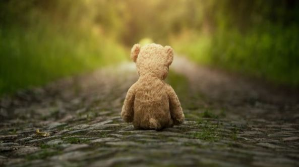 rear view of a teddy bear on a path with blurred green vegetation either side