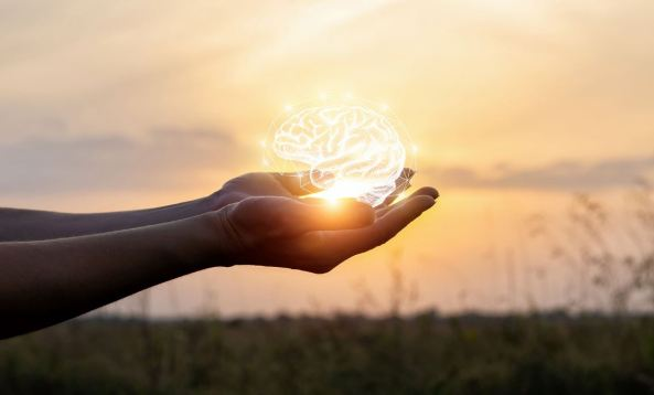 white line drawing of a brain held above palm of hand against background of sunset