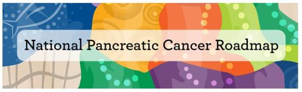 banner text 'National Pancreatic Cancer Roadmap' against multi-coloured Aboriginal dot painting blue, gold, orange, green , purple