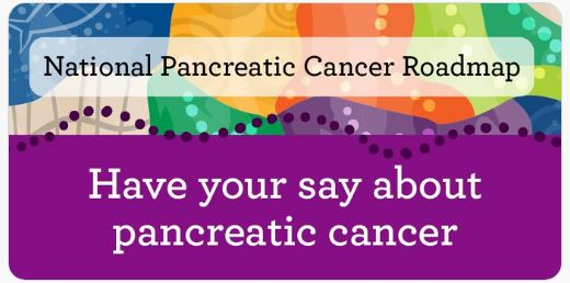 banner text 'National Pancreatic Cancer Roadmap - have your say about pancreatic cancer' purple footer, yellow, orange, blue, green top half