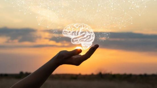hand palm holding white line drawing of brain, outback sunset in background