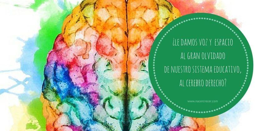 cerebro-derecho-educacion-niños
