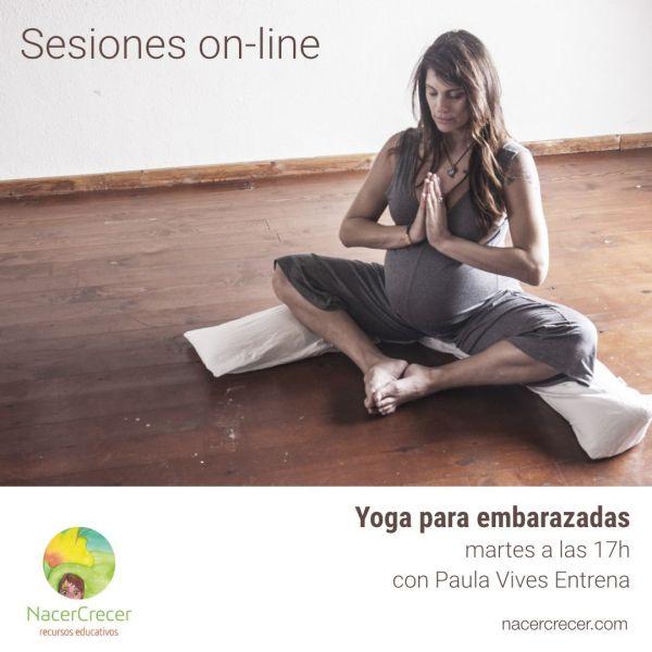Sesiones-On-Line-Embarazo