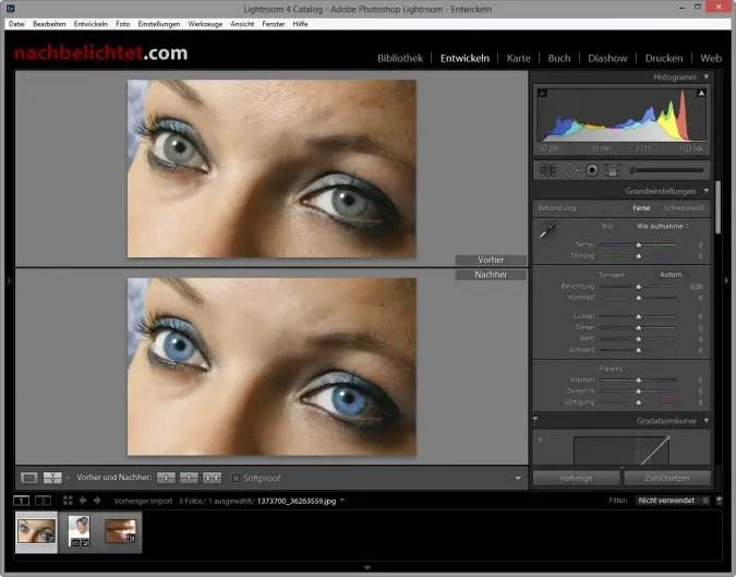 Augenfarbe, glatte Haut und scharfe Iris