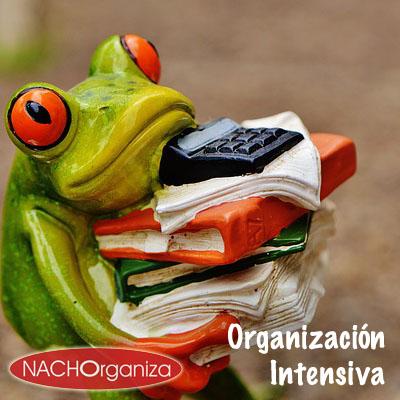 Organización Intensiva