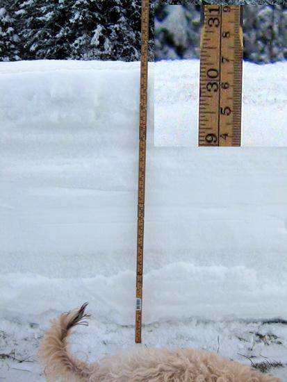 77 cm snödjup
