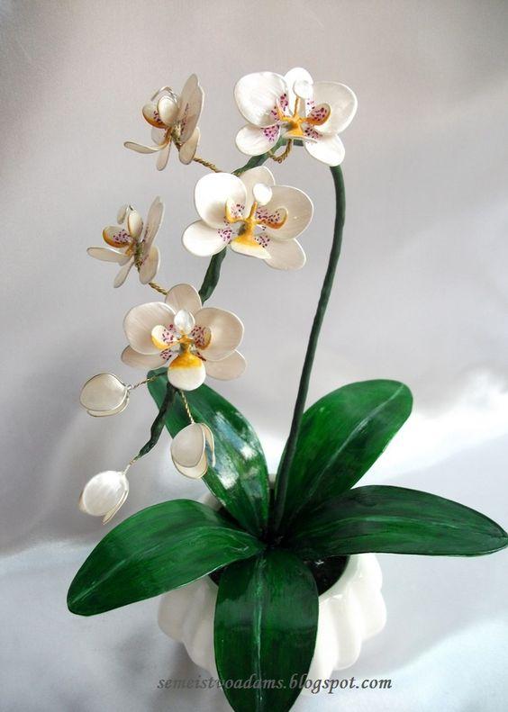 Hoa và hoa