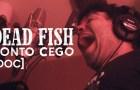 Sobre um show do Dead Fish em São Mateus e o mini doc Ponto Cego