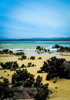 Beautiful Beach in Australia