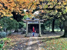 Peggy standing before the Kyu Inabu shrine tori gate