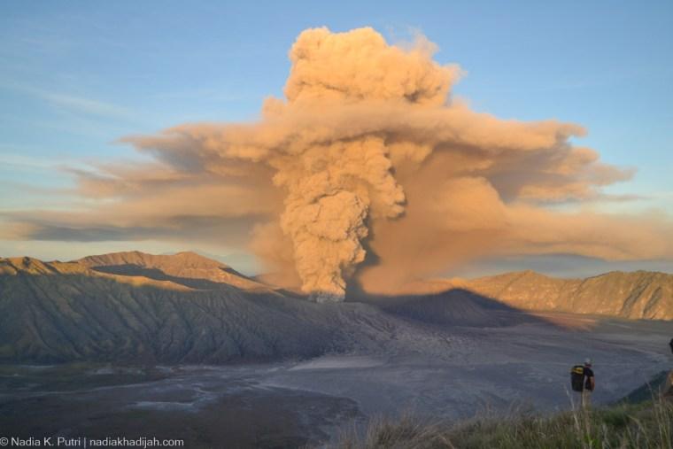 Asap erupsi Gunung Bromo dari Puncak P30 Lumajang, Argosari, Senduro, Kabupaten Lumajang, Jawa Timur (18/1/2016). (Foto: Nadia K. Putri)