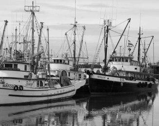 #013 Steveston docks