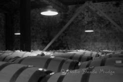 #076 Hess Cellar B&W