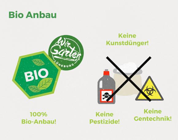 wirgarten_illustration_bioanbau_580px