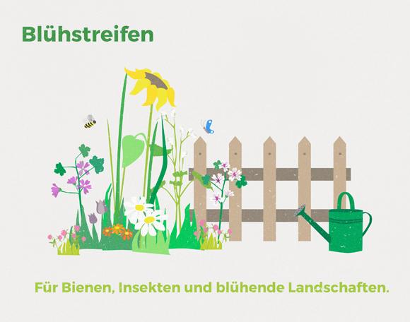 wirgarten_illustration_blu%cc%88hstreifen_580px