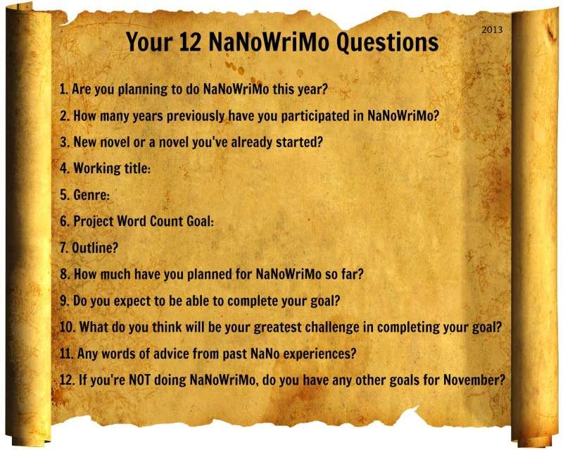 NaNo Questions 2