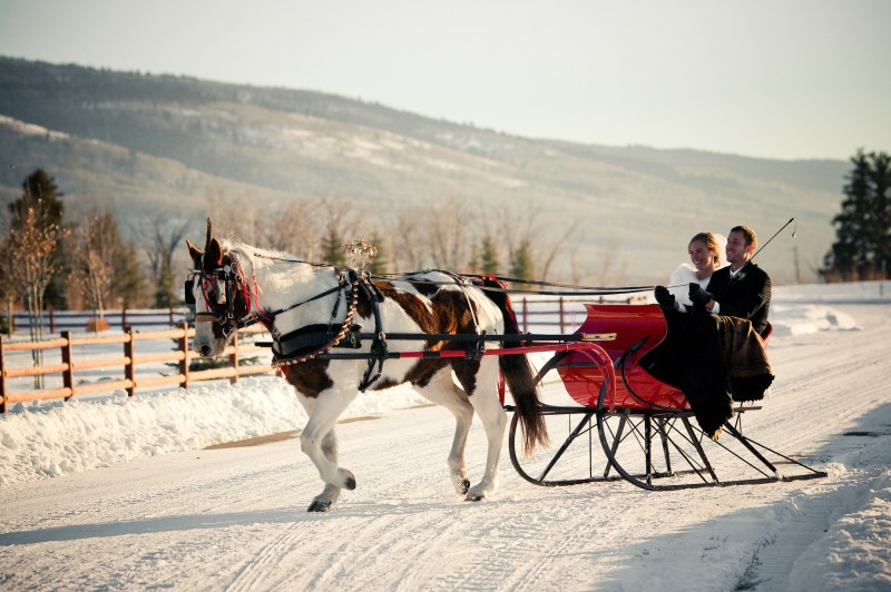 horse-and-sleigh