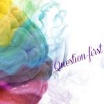 Question-first-novelist-nadine