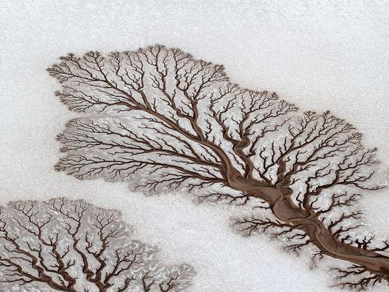 By Adriana Franco. Fotografía aérea de los ríos secos que se encuentran en Baja California, México