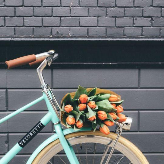 bicicleta primavera