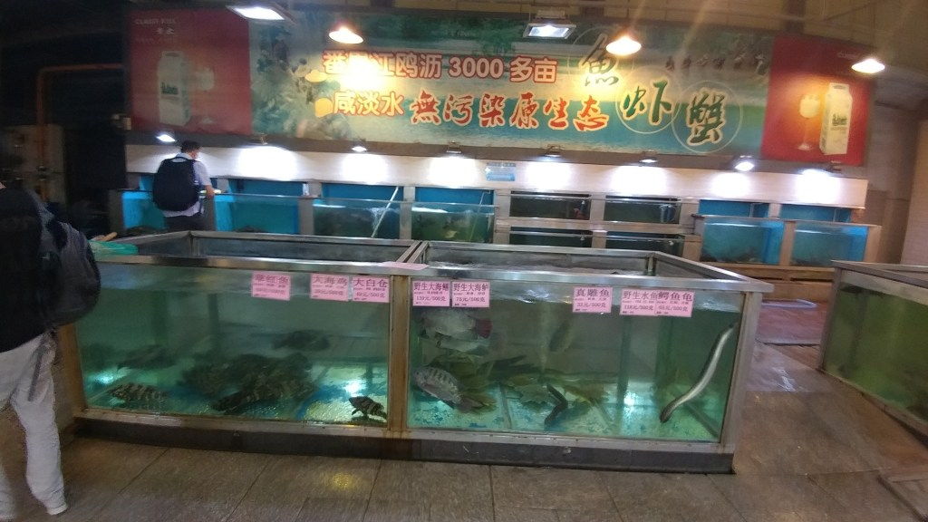Fresh fish for dinner in Guangzhou
